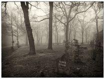 Saalburg .. Wald mit Brunnenstein von Frank Wöllnitz