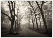 Saalburg .. Eingang im Neble von Frank Wöllnitz