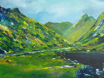 The Ring of Kerry von Conor Murphy