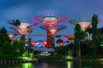 Garden by the Bay in Singapore by perfectlazybones