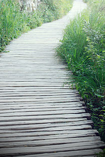 Wooden Path by tfotodesign