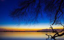 Elbe kurz nach Sonnenuntergang von Dennis Stracke