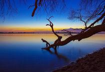 Elbe bei Sonnenuntergang von Dennis Stracke