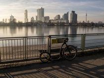 Wien-alte-donau