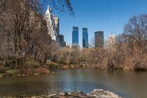 The Pond Central Park von David Tinsley