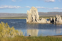 At-the-mono-lake-02