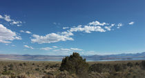 At-the-mono-lake-04