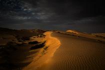 Wahiba Sands, Oman by Eva Stadler