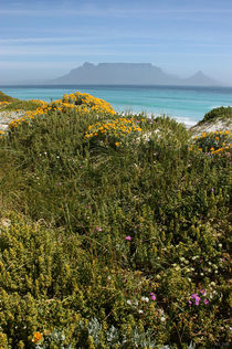 southafrica ... table mountain 02 von meleah