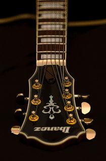 Ibanez AFJ957 Jazz Guitar von Colin Hunt