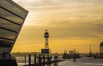 Dockland bei Nacht im Hamburger Hafen von Dennis Stracke