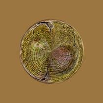 Treeringsglobe