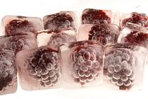 Eiskalte Brombeeren - Frozen blackberrys by Marc Heiligenstein