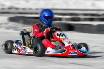 Go Kart by Gunter Nezhoda