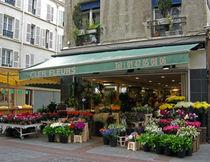 Paris-marche-des-fleurs-2