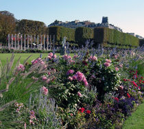 Gardens of the Palace of Versailles by Sally White