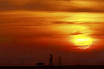 Spaziergang mit Hund by ndsh