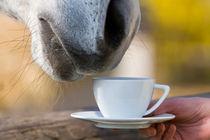 Tea Time von creativemarc