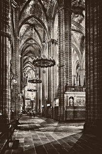 Cathedral of Santa Eulalia Barcelona by JACINTO TEE