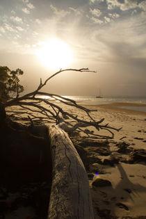 Sonnenuntergang von Tobias Pfau