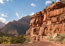 Zion Scenic Drive by John Bailey