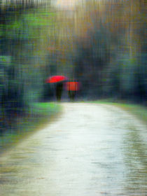 Walk In The Rain by florin