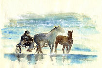 Horse-carriage-on-the-beach-m