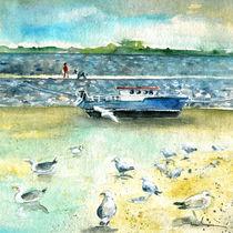 Seagulls-in-ireland-m