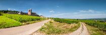 Dsc-0748-bearbeitet-panorama-bearbeitet-lr1-lr1