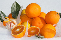 oranges and lemons on snow by bruno paolo benedetti