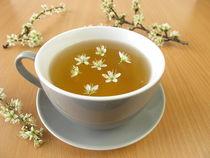 Tee mit Schlehenblüten von Heike Rau