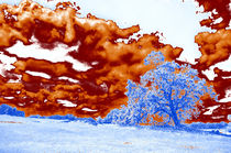 Lone Oak in a Surreal Landscape by Sally White