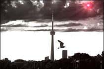 The-flight-toronto-2011