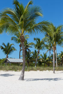 Lovely Beach On Key West East Side by John Bailey
