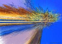 Tropical Island Sunset by Jim Plaxco