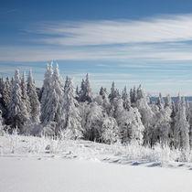 Winter im Schwarwald by Rainer Rombach