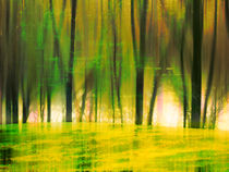 Yellow Glade by florin