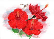 Hibiscus with Dragonfly by Linda Ginn