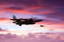Jaguar-sunrise