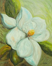 Springs-first-magnolia-2