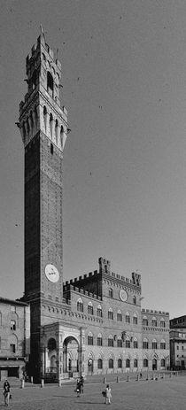 Siena - Palazzo Pubblico von Wolfgang Dengler
