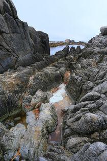 Monterey Bay von Vadim Smirnov