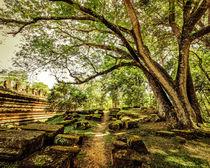 Park Landscape of Angkor Wat. Cambodia von perfectlazybones