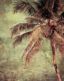 Palm Tree von perfectlazybones
