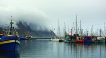 Houtbay Harbor von crismanart