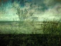 Landschaftfin3