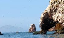 die Vogelinsel by reisemonster