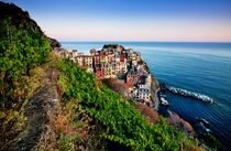 Manarola I by David Pinzer