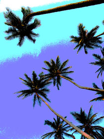 PalmArt by reisemonster