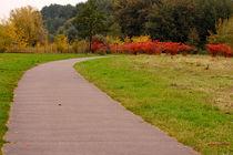 Weg in den Herbst von bagojowitsch